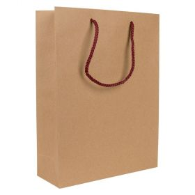 Larger Paper Gift Bag | Rope Handles Kraft