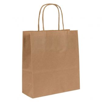 Small Paper Gift Bag   Twisted Handles  Kraft