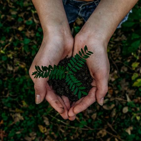 Eco/Sustainability Page