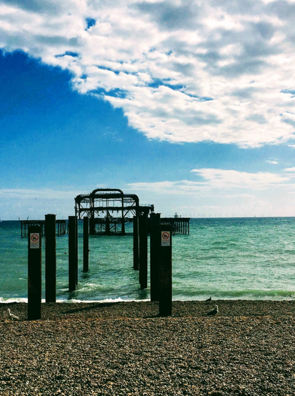 10 Reasons to Take Part in a Beach Clean