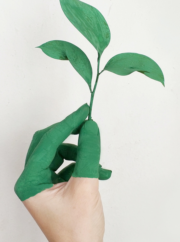 Not easy being a green consumer? It could it be down to your personality
